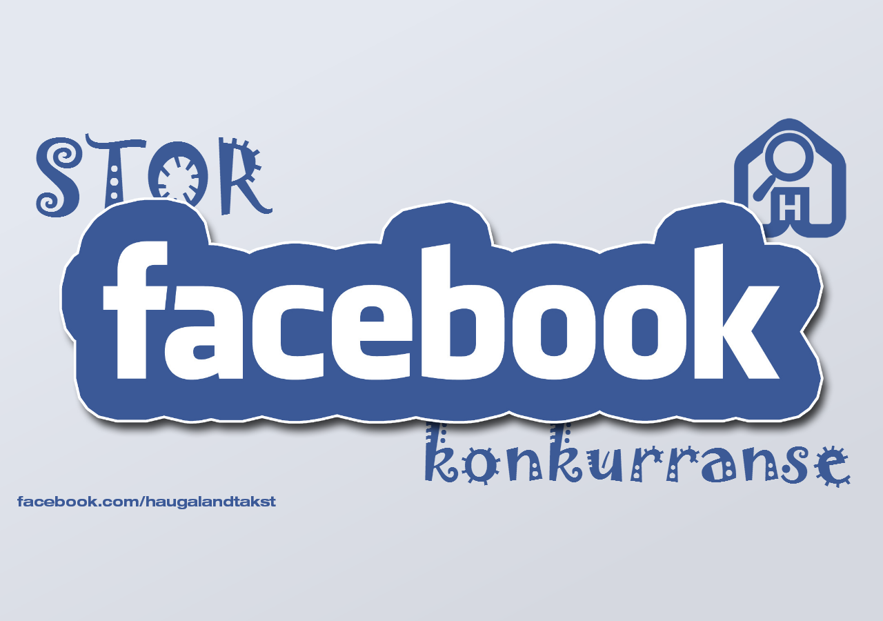Facebook konkurranse